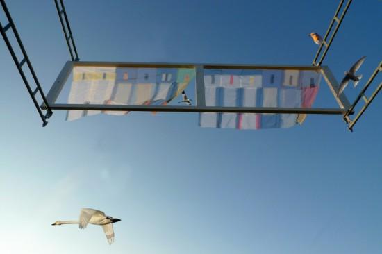 vindue til verden med trækfugle