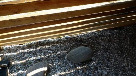 sten og træ